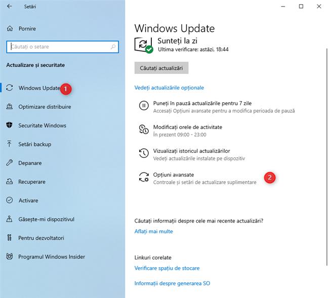 În setările Windows Update, mergi la Opțiuni avansate