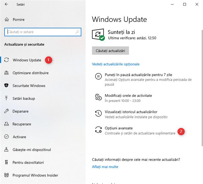 Apasă pe butonul Opțiuni avansate din setările Windows Update
