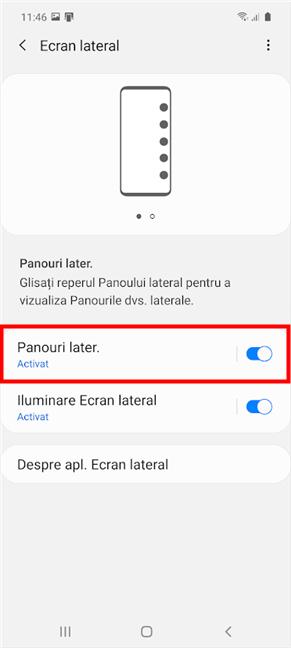 Activează comutatorul sau apasă Panouri later. pentru mai multe setări