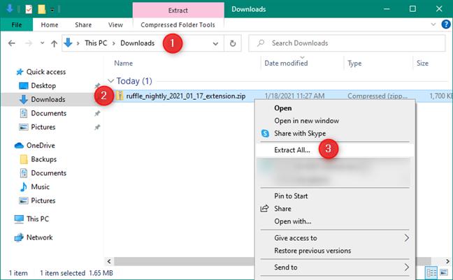 Dezarhivarea extensiei de browser Chrome Ruffle