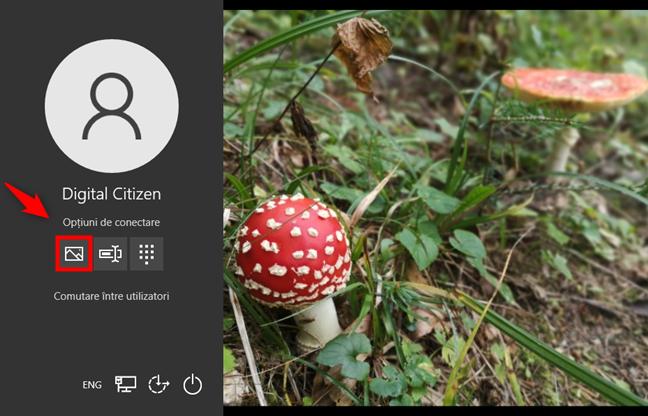 Opțiuni de conectare la Windows 10: Cum folosești o Parolă prin imagine