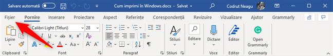Meniul Fișier din Microsoft Word