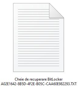 Un fișier cu o cheie de recuperare BitLocker