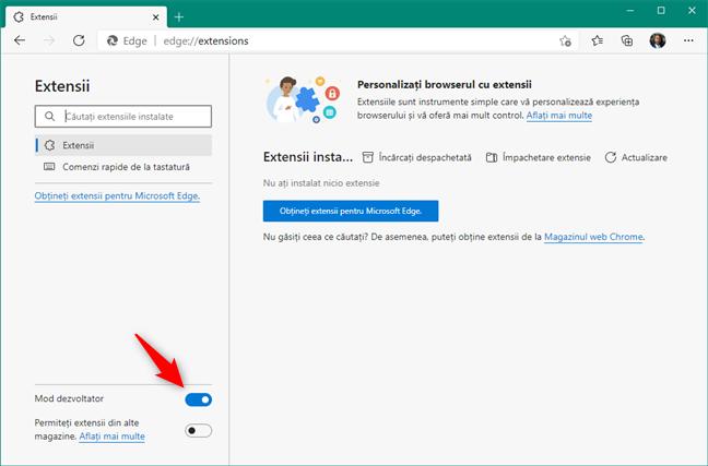 Activare Mod dezvoltator în Microsoft Edge