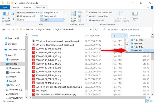 Filtrează un folder să afișeze numai fișierele PNG