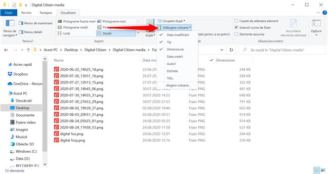 Apasă Adăugare coloane pentru opțiuni de filtrare suplimentare