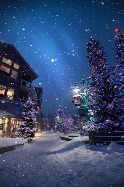 Ninge pe o stradă plină de brazi decorați de Crăciun