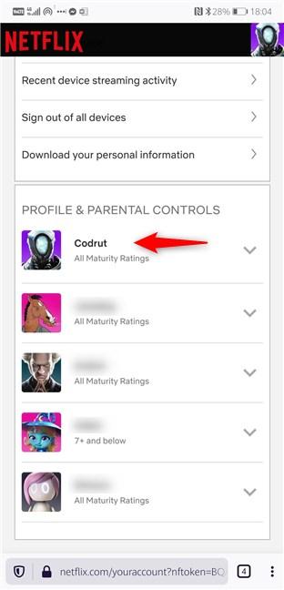 Selectarea unui profil din contul Netflix
