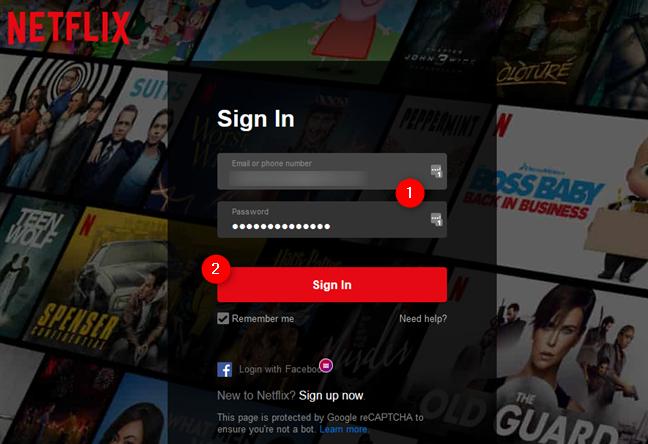 Introducerea datelor de conectare la Netflix