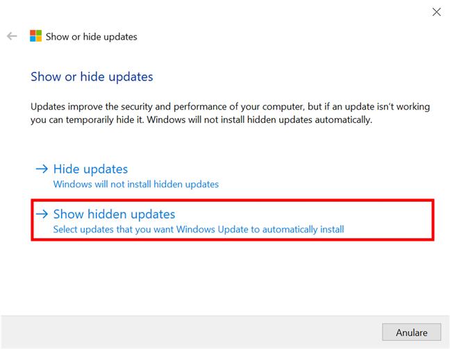Arată actualizările ascunse în prealabil în Windows 10