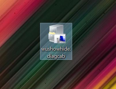 Deschide fișierul pentru a arăta sau ascunde actualizări în Windows 10
