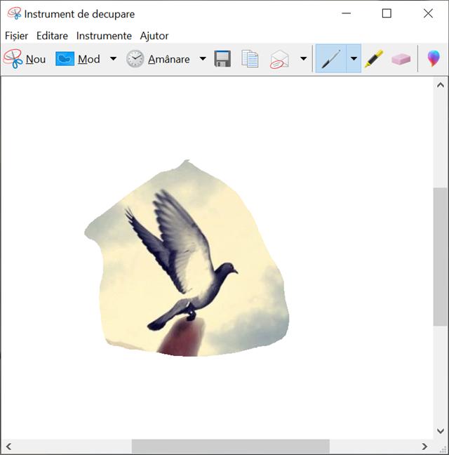 Capturile de ecran sunt sunt deschise în modul de editare din Instrumentul de decupare