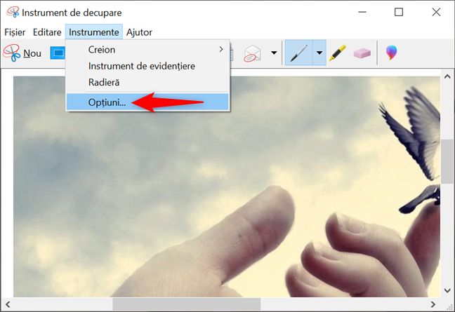 Accesează Opțiuni din modul de editare al aplicației