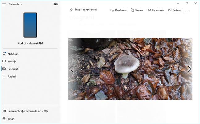 Folosirea aplicației Telefonul dvs. pentru a vedea o fotografie din Android pe Windows 10