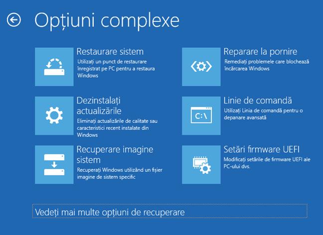 Opțiuni complexe pentru depanarea Windows 10