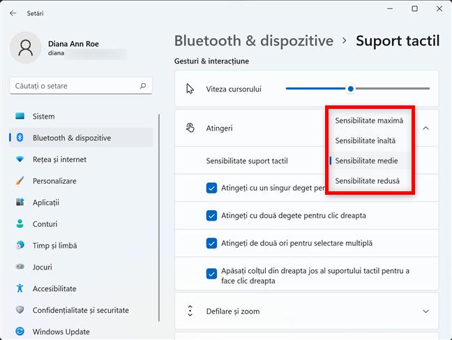 Cum schimbi sensibilitatea touchpadului în Windows 11
