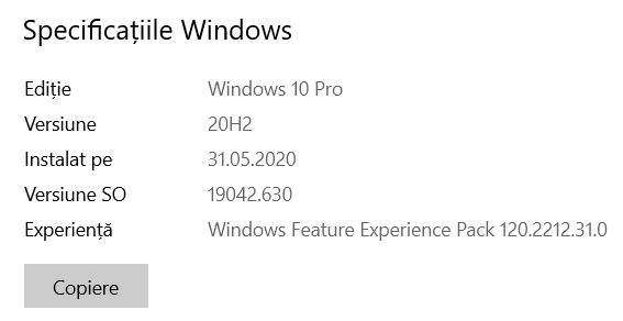 Versiune SO sau Compilare OS pentru Windows 10 versiunea 20H2